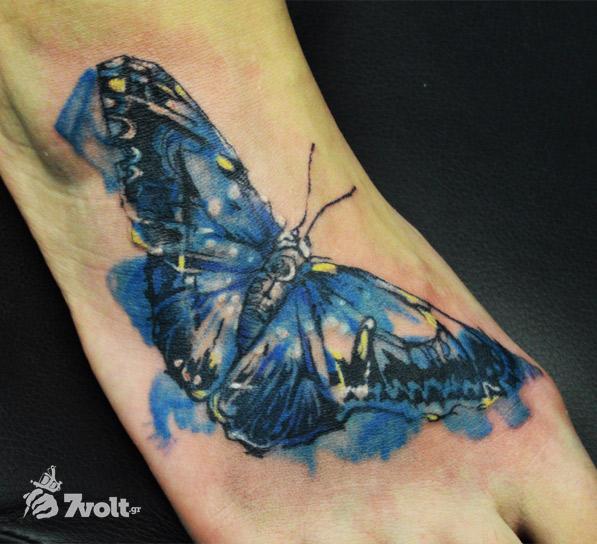 butterfly-water