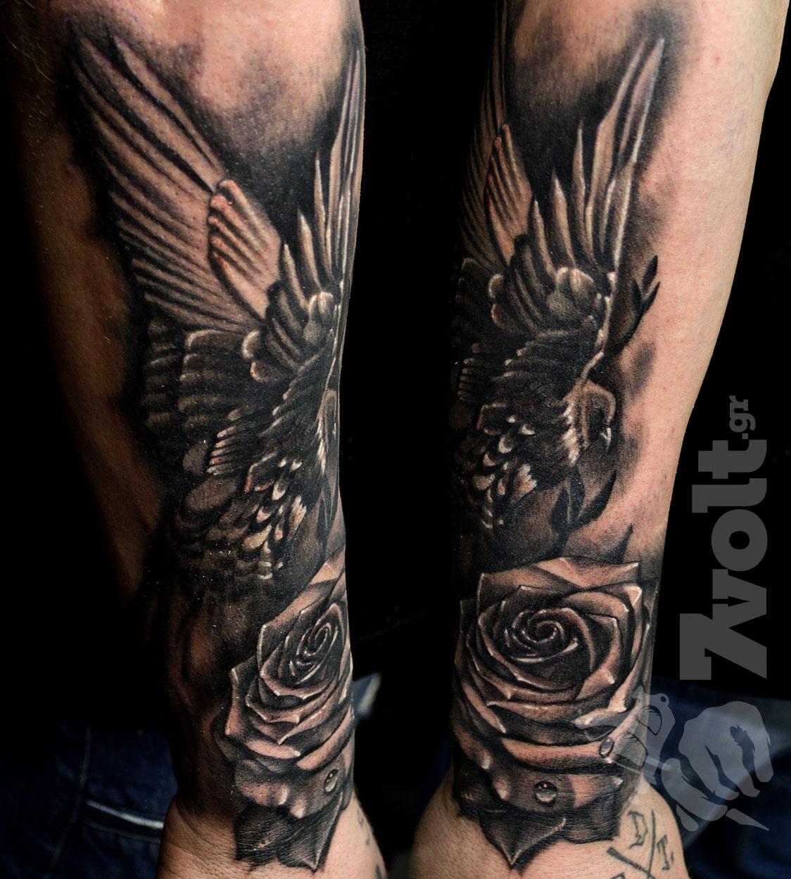 rose-dove